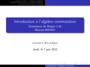 Introduction à l`algèbre commutative