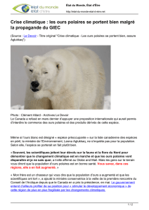 5 serviettes Ours polaires Nanouk Serviettes technique Polar Bears 1//4 Bleu Clair Ours