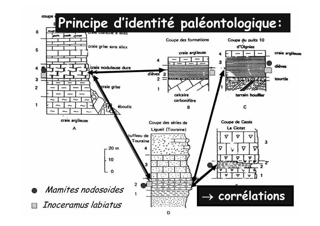 méthodes de datation des roches et des fossiles utilisés par les paléontologues ASTIN et allié datant