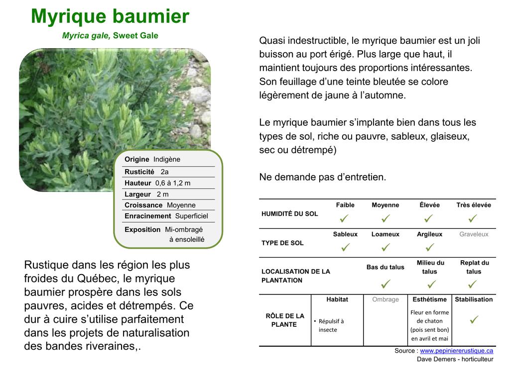 Plantes Pour Talus Sec fiches des arbustes v.2 - municipalité de notre-dame-du-laus