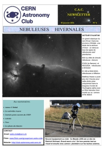 CERN Astronomy Club Newsletter Issue 6 (January 2014)