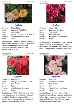 Catalogue Paysagers 2015-2016 - rosier
