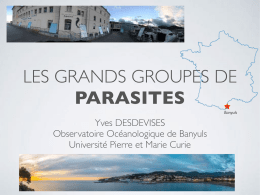 cours - Yves Desdevises