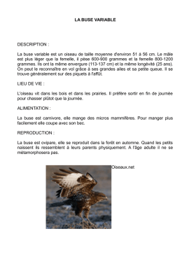 LA BUSE VARIABLE DESCRIPTION : La buse variable est un