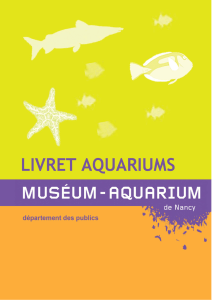 les aquariums - Museum Aquarium de Nancy