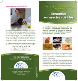 L`expertise en Insectes nuisibles