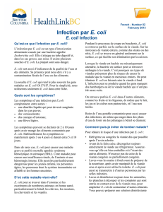 Infection par E. coli
