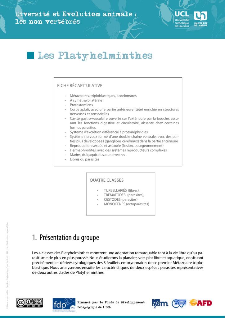 Les class des plathelminthes, Reproducere platyhelminthes Paraziti les platyhelminthes