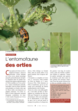 L`entomofaune des orties