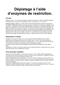 Dépistage à l`aide d`enzymes de restriction.