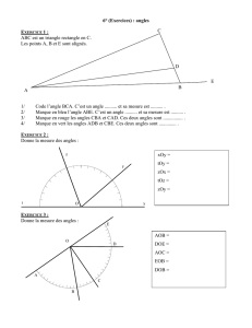 6° (Exercices) : angles ABC est un triangle rectangle en C. Les
