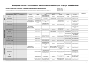 principaux risques d`incidences au format pdf