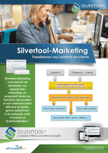 Silvertool-Marketing