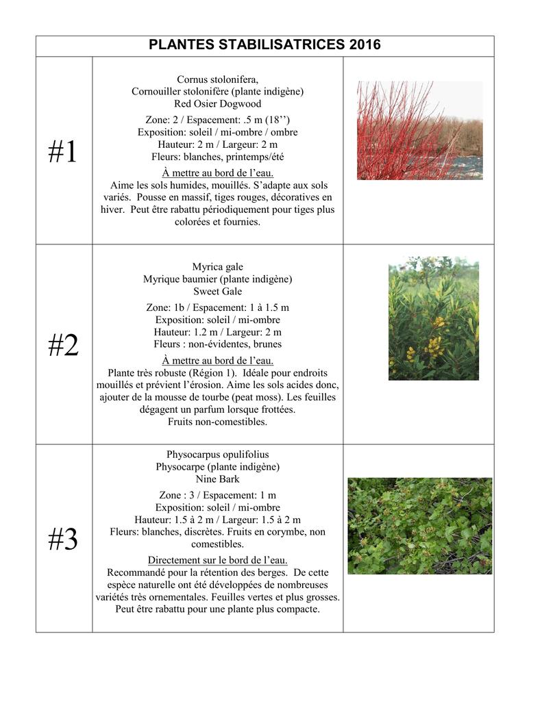 Fleurs Pour Mi Ombre arbres et arbustes_2016 fr-2