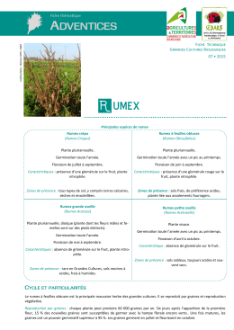 Le contr le des plantes ind sirables en prairies fourrages - Chambre agriculture yonne ...