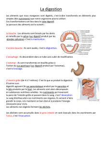 La Digestion Evaluation