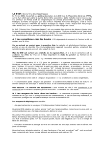 BVD article Bernard - Association Française Lamas Alpagas