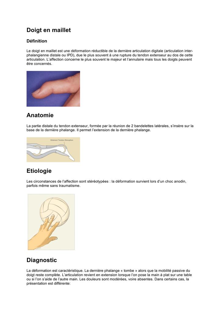 Ziemlich Was Ist Die Definition Der Anatomie Und Physiologie Ideen ...