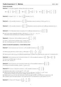 Feuille d`exercices no 11 : Matrices