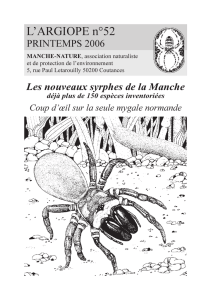 Atypus affinis Eichwald, 1830 - Manche