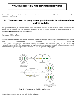 Transmission du programme génétique de la cellule