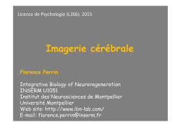 Imagerie cérébrale - Integrative Biology of Neuroregeneration