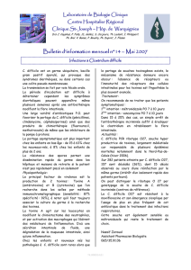 Bulletin n°14 mai 2007 Infections à clostridium difficile