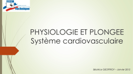 PHYSIOLOGIE ET PLONGEE Système cardiovasculaire
