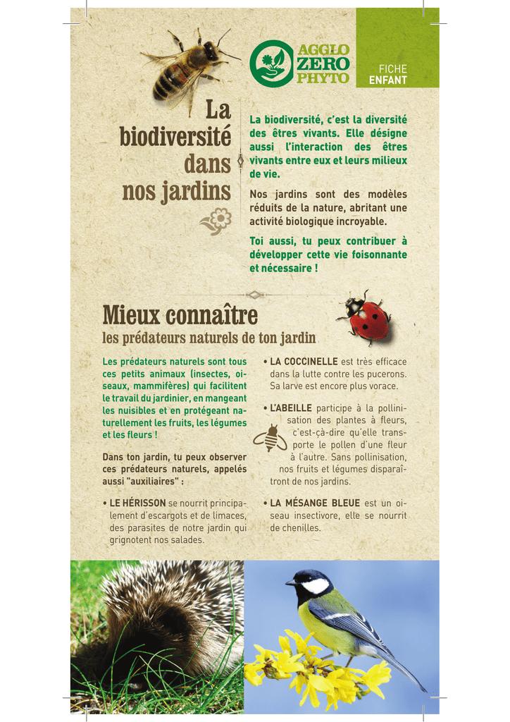 Fiche enfant La biodiversité dans nos jardins