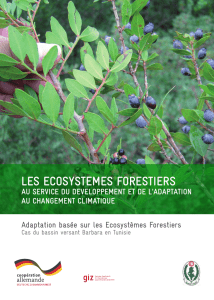 LES ECOSYSTEMES FORESTIERS