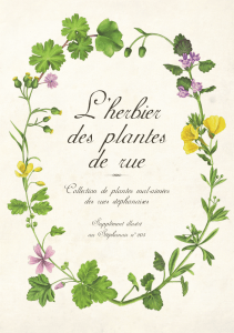 Collection de plantes mal-aimees des rues stephanaises
