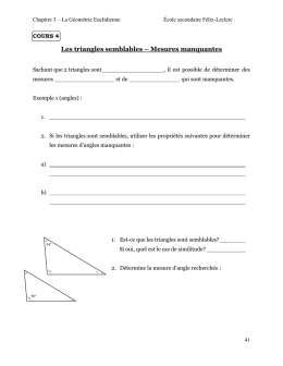 Les triangles congrus - Blogues CSAffluents.qc.ca