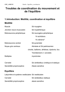 TRANSP-Equilibre_coordination