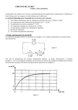 solution maximale équation différentielle