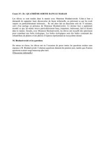 Haute Qualit/é P/ôLe De Randonn/éE pour La Randonn/éE Et Le Camping en Plein Air 700g