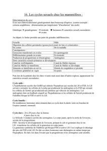 Document Word - Cercle du Phage Solaire