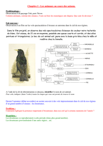 Cours animaux ( DOC