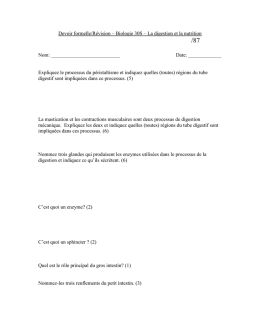 Quiz – Biologie 30S – Digestion