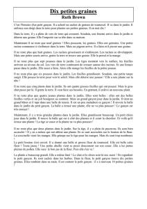 Ombres /& Lumieres OLCONEMP50MH20BCPERC Abat-jour conique Empire Blanc cass/é 50x20x30 100/% Coton
