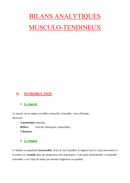 bilans analytiques musculo-tendineux