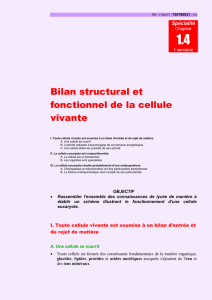 Bilan structural et fonctionnel de la cellule vivante
