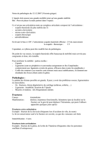 Notes de pathologies du 12