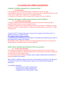 4 chap5 reproduction humaine