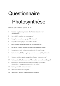 Questionnaire : Photosynthèse Cf. Mader pp.98