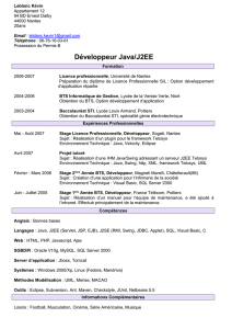 CV_Developpeur
