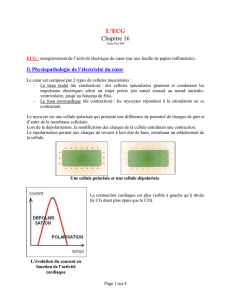 cardio_ch_16 - Page d`accueil