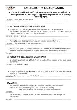 Evaluation de grammaire CM1 : l`adjectif qualificatif. /15 1 2 3