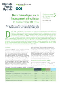 le financement REDD+ - Overseas Development Institute