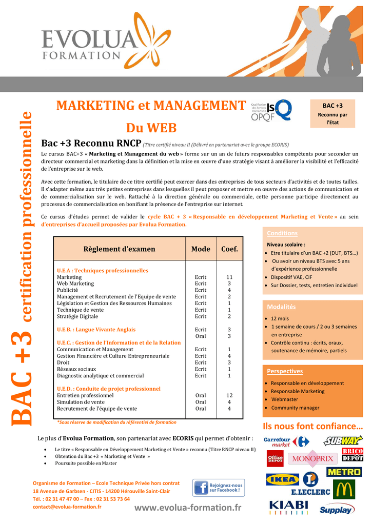 Marketing Et Management Du Web
