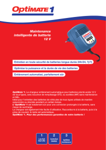1 2 3 Maintenance intelligente de batterie 12 V